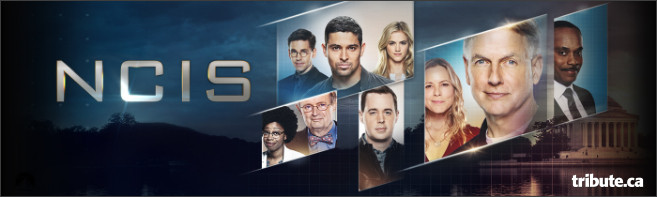 NCIS: THE SEVENTEENTH SEASON DVD Contest