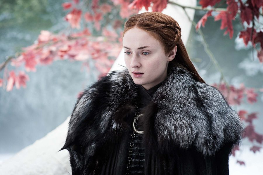 Sansa's reunion with her siblings is far from what she expected