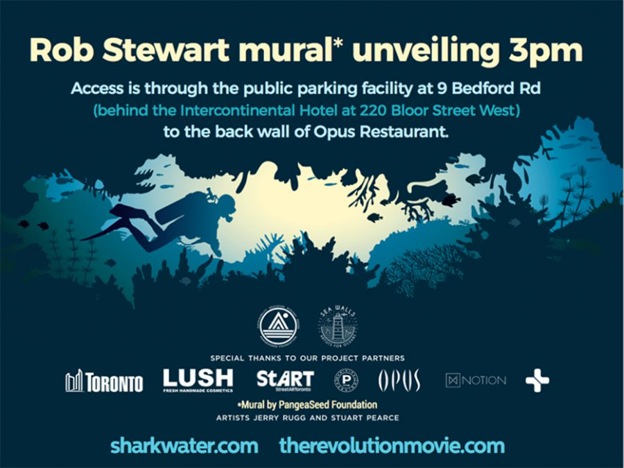 Rob Stewart mural unveiling