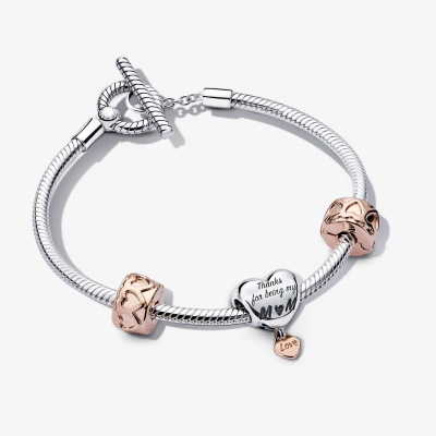 Pandora Mom's Love Bracelet Gift Set
